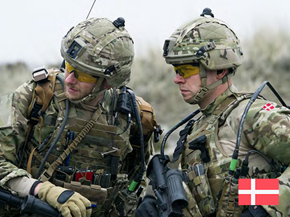 Royal Danish Army